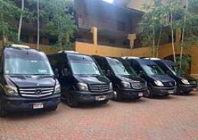 Private Limo Vans